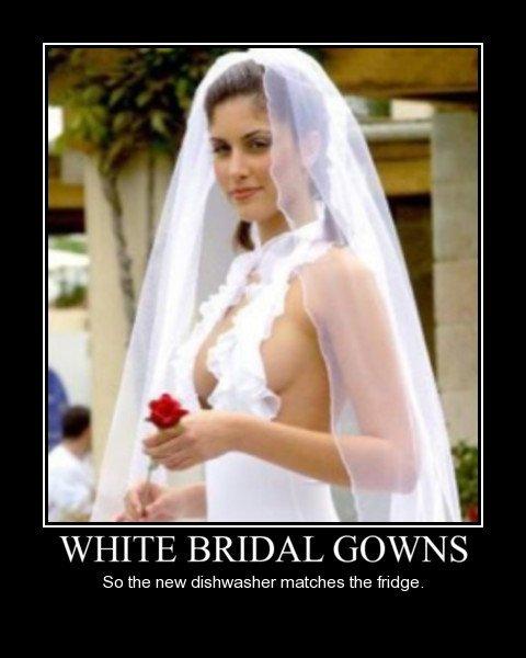 white-bridal-gowns-so-the-new-dishwasher-matches-the-fridge.jpg